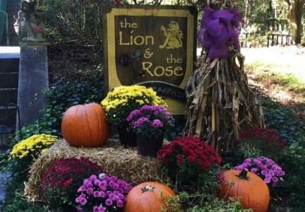 Photo Gallery, The Lion and the Rose